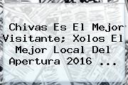Chivas Es El Mejor Visitante; Xolos El Mejor Local Del Apertura 2016 ...