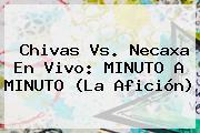 <b>Chivas Vs</b>. <b>Necaxa</b> En Vivo: MINUTO A MINUTO (La Afición)