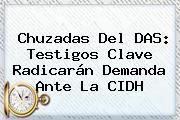 Chuzadas Del DAS: Testigos Clave Radicarán Demanda Ante La CIDH