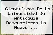 Científicos De La <b>Universidad De Antioquia</b> Descubrieron Un Nuevo ...