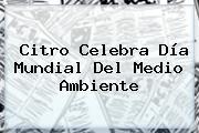 Citro Celebra Día Mundial Del <b>Medio Ambiente</b>