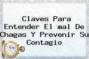 Claves Para Entender El <b>mal De Chagas</b> Y Prevenir Su Contagio