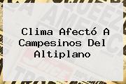 <b>Clima</b> Afectó A Campesinos Del Altiplano