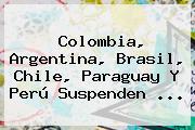 Colombia, Argentina, Brasil, Chile, Paraguay Y Perú Suspenden ...