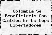 Colombia Se Beneficiaría Con Cambios En La <b>Copa Libertadores</b>