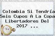 Colombia Si Tendría Seis Cupos A La <b>Copa Libertadores</b> Del 2017 ...