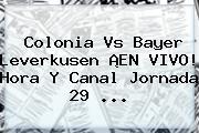 Colonia Vs <b>Bayer Leverkusen</b> ¡EN VIVO! Hora Y Canal Jornada 29 <b>...</b>