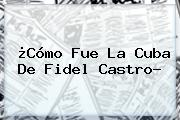 ¿Cómo Fue La Cuba De <b>Fidel Castro</b>?