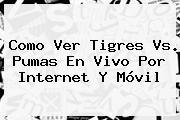 Como Ver <b>Tigres Vs. Pumas En Vivo</b> Por Internet Y Móvil