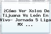 ¿Cómo Ver Xolos De <b>Tijuana Vs León</b> En Vivo? Jornada 5 Liga MX ...