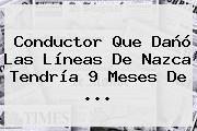 Conductor Que Dañó Las <b>Líneas De Nazca</b> Tendría 9 Meses De ...