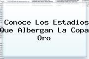 Conoce Los Estadios Que Albergan La <b>Copa Oro</b>