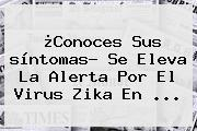 ¿Conoces Sus <b>síntomas</b>? Se Eleva La Alerta Por El Virus <b>Zika</b> En <b>...</b>
