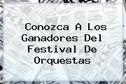Conozca A Los Ganadores Del <b>Festival De Orquestas</b>