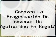 Conozca La Programación De <b>novenas De Aguinaldos</b> En Bogotá