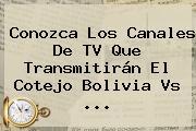 Conozca Los Canales De TV Que Transmitirán El Cotejo <b>Bolivia Vs</b> ...