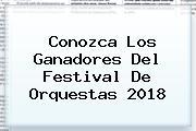 Conozca Los Ganadores Del <b>Festival De Orquestas 2018</b>