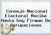 Consejo <b>Nacional</b> Electoral Recibe Hasta <b>hoy</b> Firmas De Agrupaciones