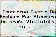 Consterna Muerte De Bombero Por Picadura De <b>araña Violinista</b> En <b>...</b>
