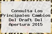 Consulta Los Principales Cambios Del <b>Draft</b> Del <b>Apertura 2015</b>