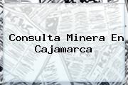 Consulta Minera En Cajamarca
