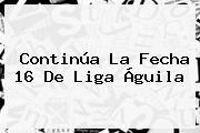 Continúa La Fecha 16 De Liga Águila
