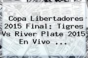 Copa Libertadores 2015 Final: <b>Tigres Vs River</b> Plate 2015 En Vivo ...