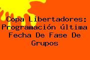 <b>Copa Libertadores</b>: Programación última Fecha De Fase De Grupos