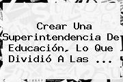 Crear Una Superintendencia De Educación, Lo Que Dividió A Las ...