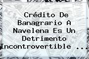 Crédito De Banagrario A Navelena Es Un Detrimento Incontrovertible ...
