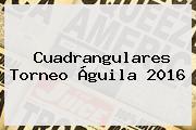 <b>Cuadrangulares Torneo Águila 2016</b>