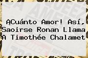 ¡Cuánto Amor! Así, Saoirse Ronan Llama A <b>Timothée Chalamet</b>