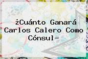 ¿Cuánto Ganará <b>Carlos Calero</b> Como Cónsul?