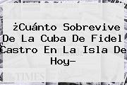 ¿Cuánto Sobrevive De La Cuba De <b>Fidel Castro</b> En La Isla De Hoy?