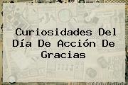 Curiosidades Del <b>Día De Acción De Gracias</b>