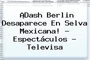 ¡<b>Dash Berlin</b> Desaparece En Selva Mexicana! - Espectáculos - Televisa
