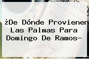 ¿De Dónde Provienen Las Palmas Para <b>Domingo De Ramos</b>?