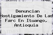 <i>Denuncian Hostigamiento De Las Farc En Ituango, Antioquia</i>
