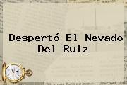 Despertó El <b>Nevado Del Ruiz</b>