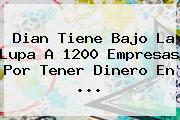 <b>Dian</b> Tiene Bajo La Lupa A 1200 Empresas Por Tener Dinero En ...