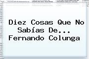 Diez Cosas Que No Sabías De... <b>Fernando Colunga</b>