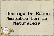 <b>Domingo De Ramos</b> Amigable Con La Naturaleza