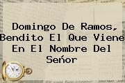 <b>Domingo De Ramos</b>, Bendito El Que Viene En El Nombre Del Señor