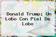 <b>Donald Trump</b>: Un Lobo Con Piel De Lobo