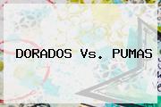 <b>DORADOS Vs. PUMAS</b>