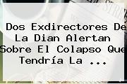 Dos Exdirectores De La <b>Dian</b> Alertan Sobre El Colapso Que Tendría La ...