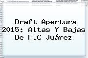 Draft <b>Apertura 2015</b>: <b>Altas Y Bajas</b> De F.C Juárez