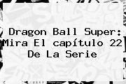 <b>Dragon Ball Super</b>: Mira El <b>capítulo 22</b> De La Serie
