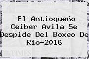 El Antioqueño <b>Ceiber Avila</b> Se Despide Del Boxeo De Rio-2016