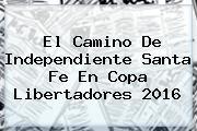 El Camino De Independiente <b>Santa Fe</b> En Copa Libertadores 2016